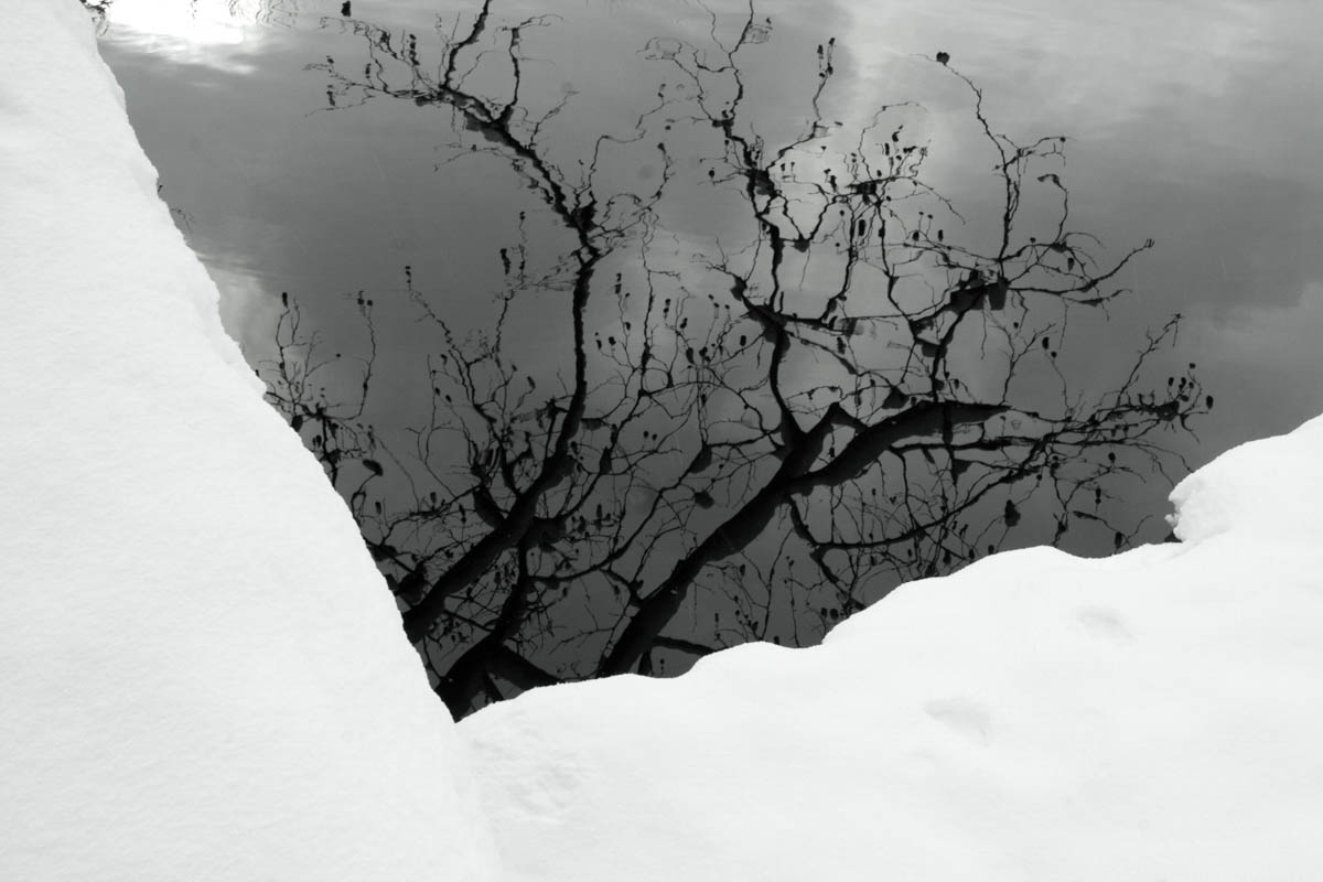 Brian_K_Powers_Photography_Nature_037.jpg