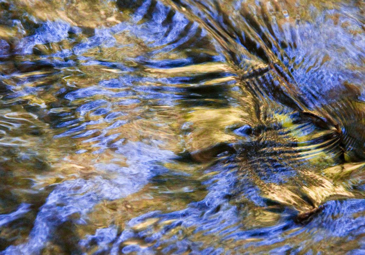 Brian_K_Powers_Photography_Nature_048.jpg