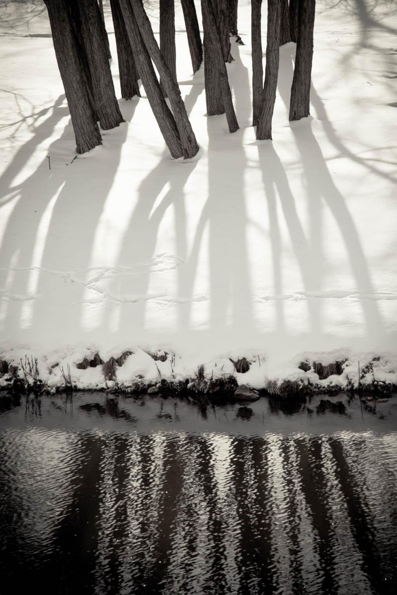 Brian_K_Powers_Photography_Nature_103.jpg