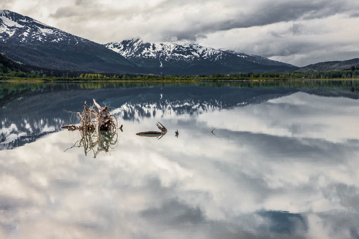 Brian_K_Powers_Photography_Nature_1046.jpg