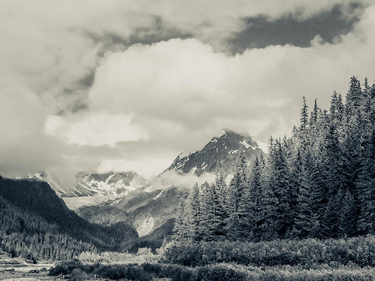 Brian_K_Powers_Photography_Nature_1049.jpg