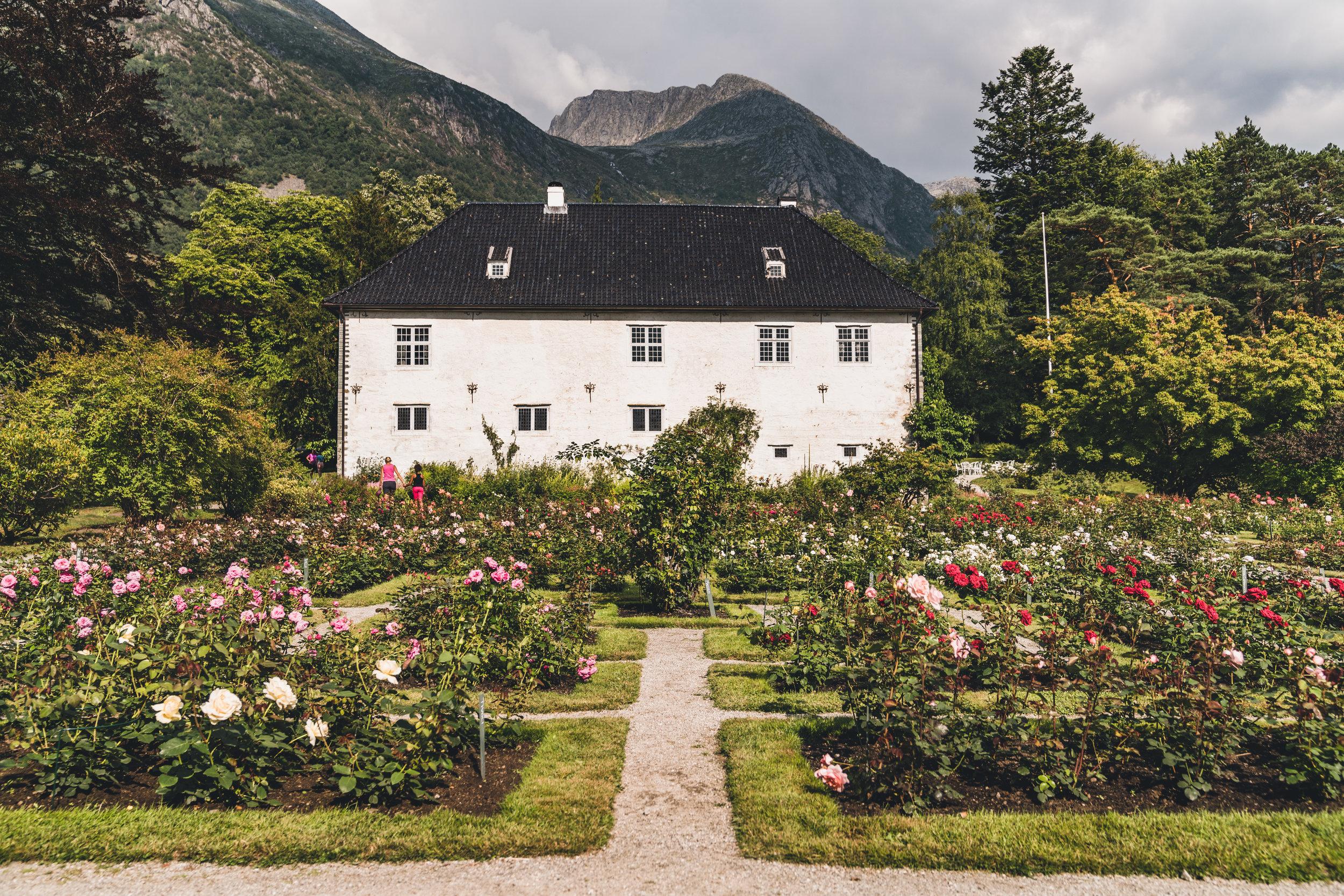Områdefoto av Baroniet i Rosendal.