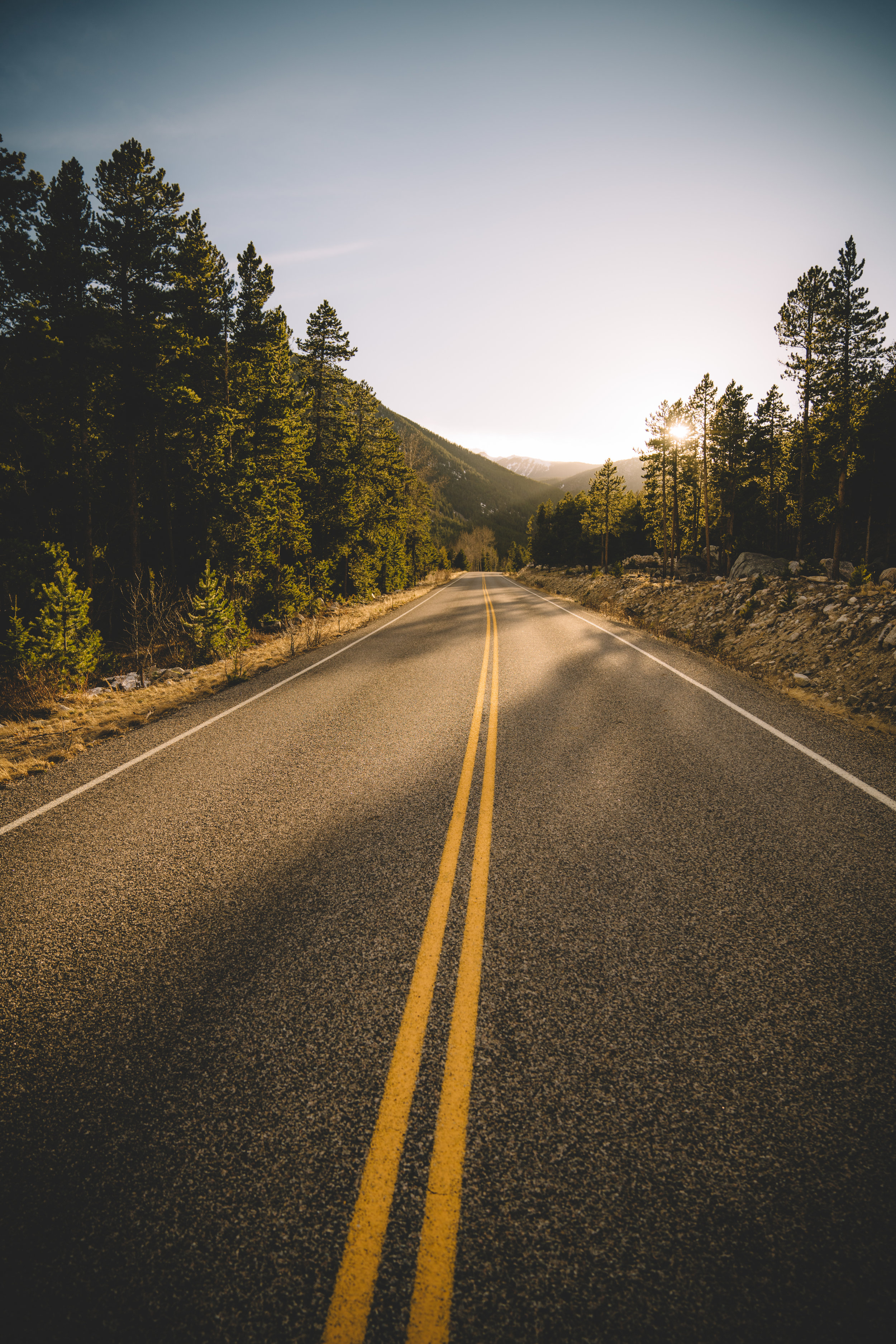 Not all roads lead to gold, but in Montana it certainly seems like it! West Fork Rd in Red Lodge, Mt.
