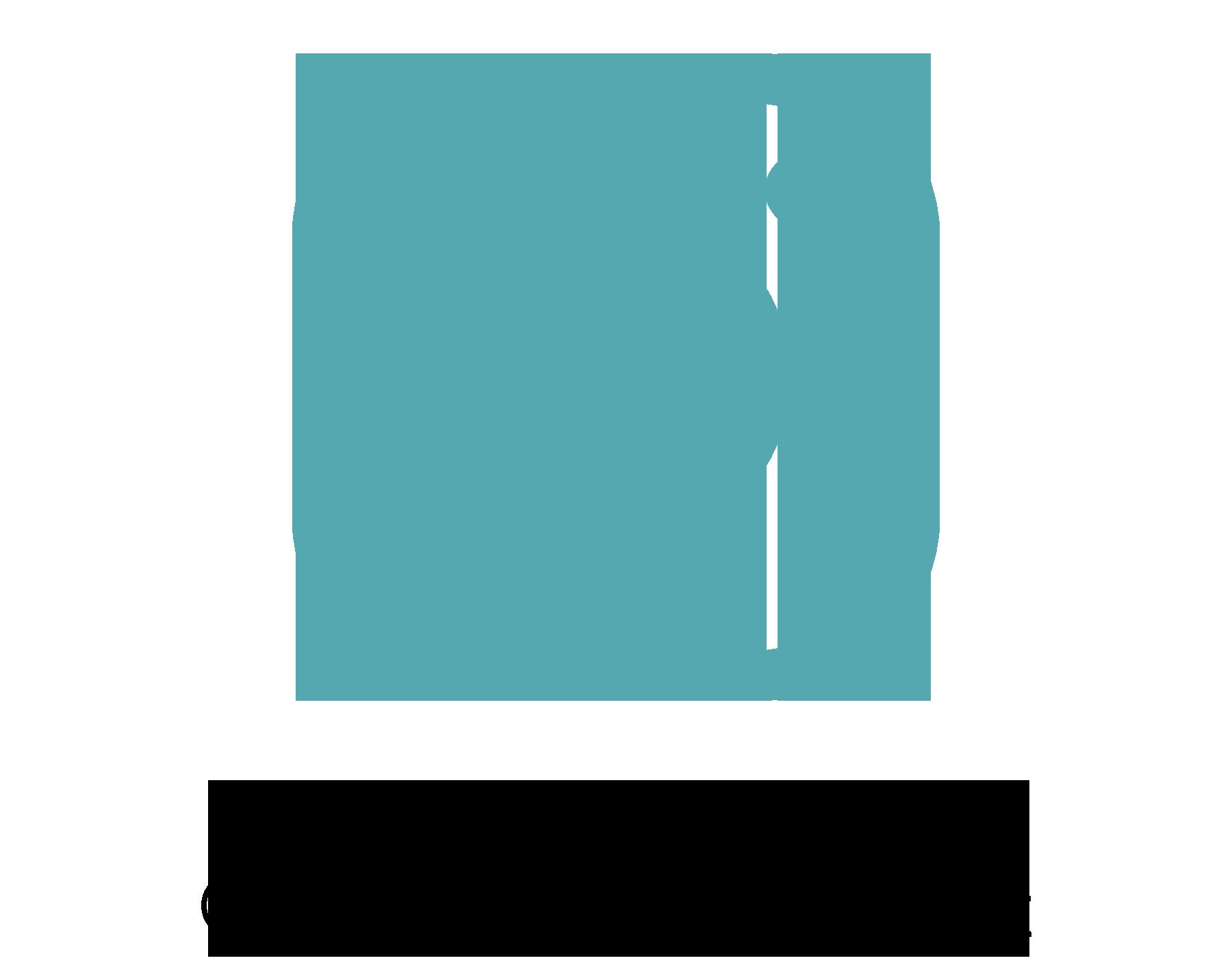 Image of Instagram logo. Follow us at LoveStruckInKeyWest account.