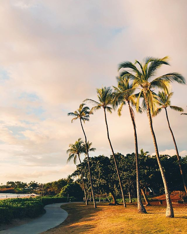 || sunsets on the big island: a collection 🌴☀️✨ just in time to island hop