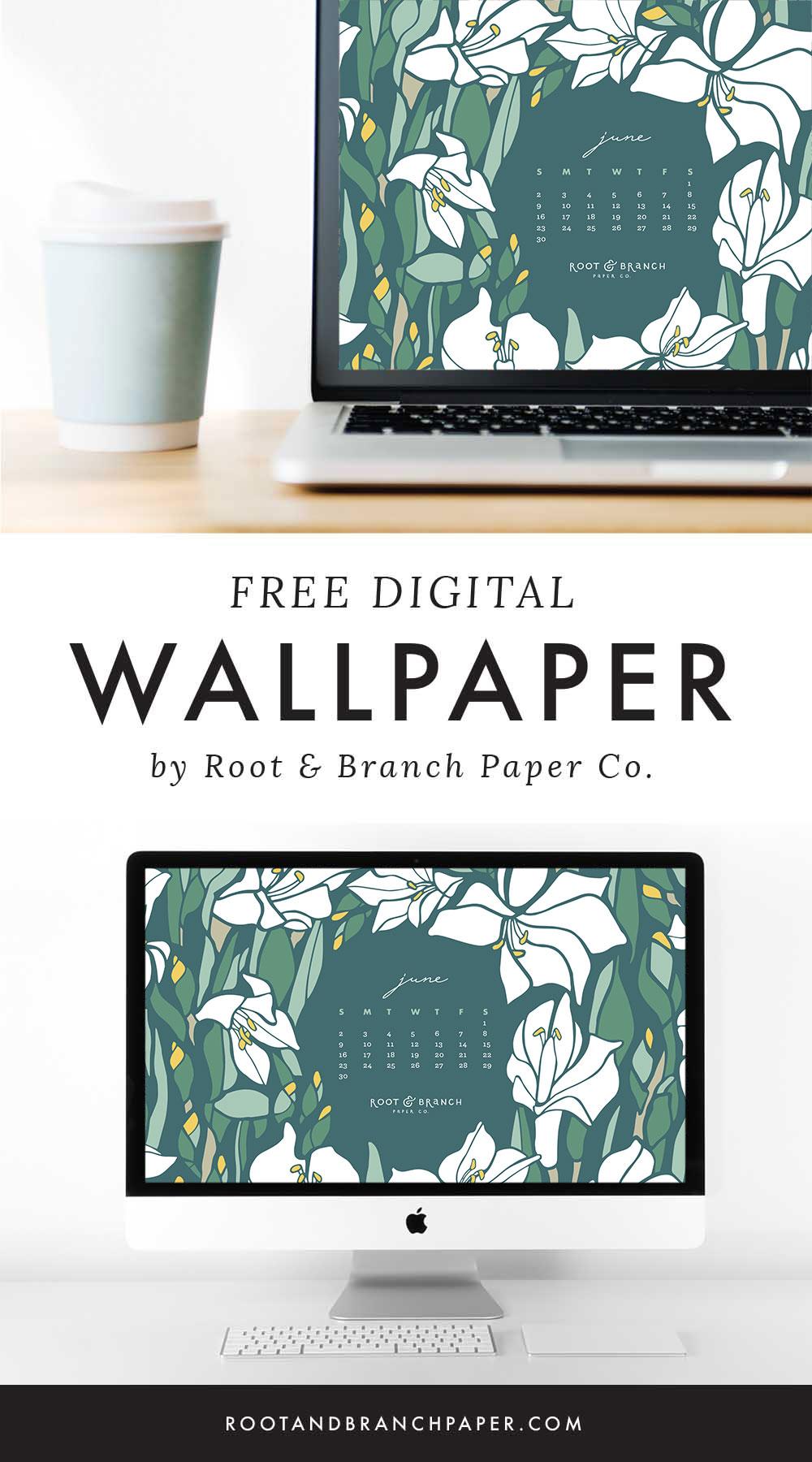 June 2019 Calendar Wallpaper, Free Digital Desktop Wallpaper, Illustrated Floral Desktop Calendar by Root & Branch Paper Co.