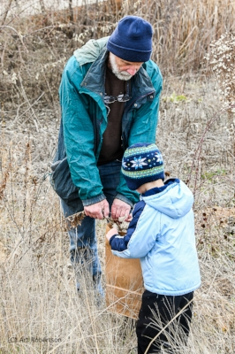 Volunteers collect seeds together. Photo by Art Robertson.