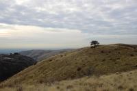 Cartwright Ridge ~ photo courtesy of Boise Regional Realtors
