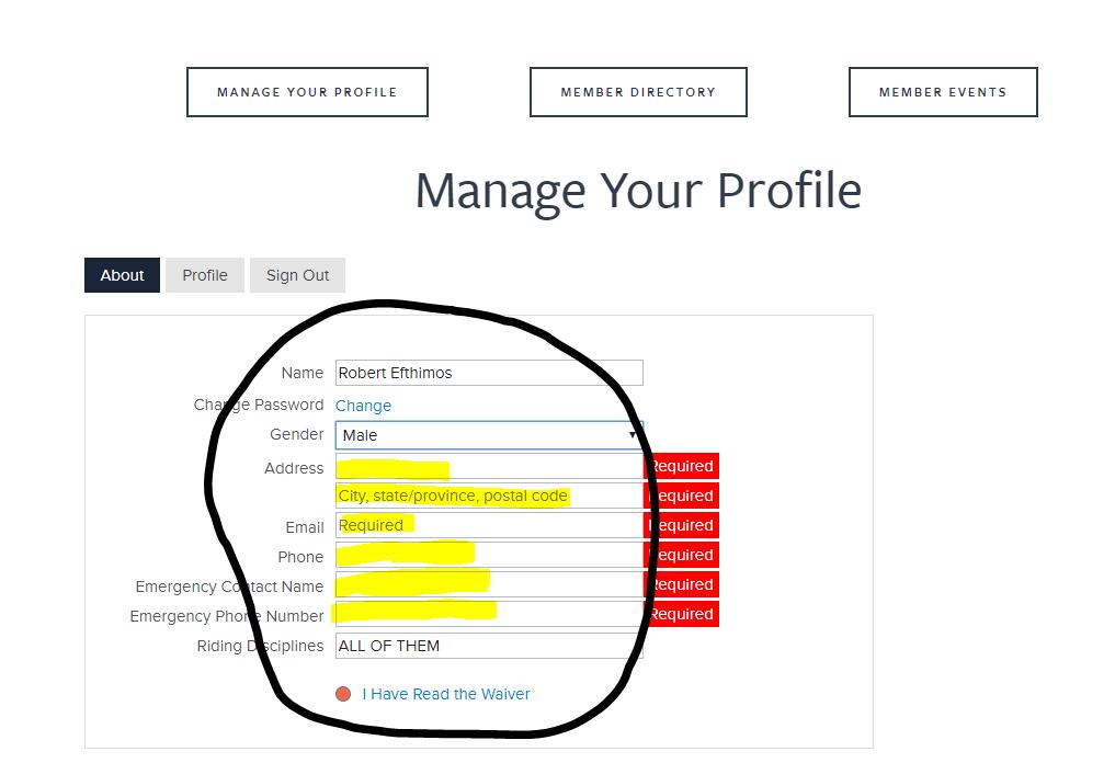 Website Profile 4.PNG