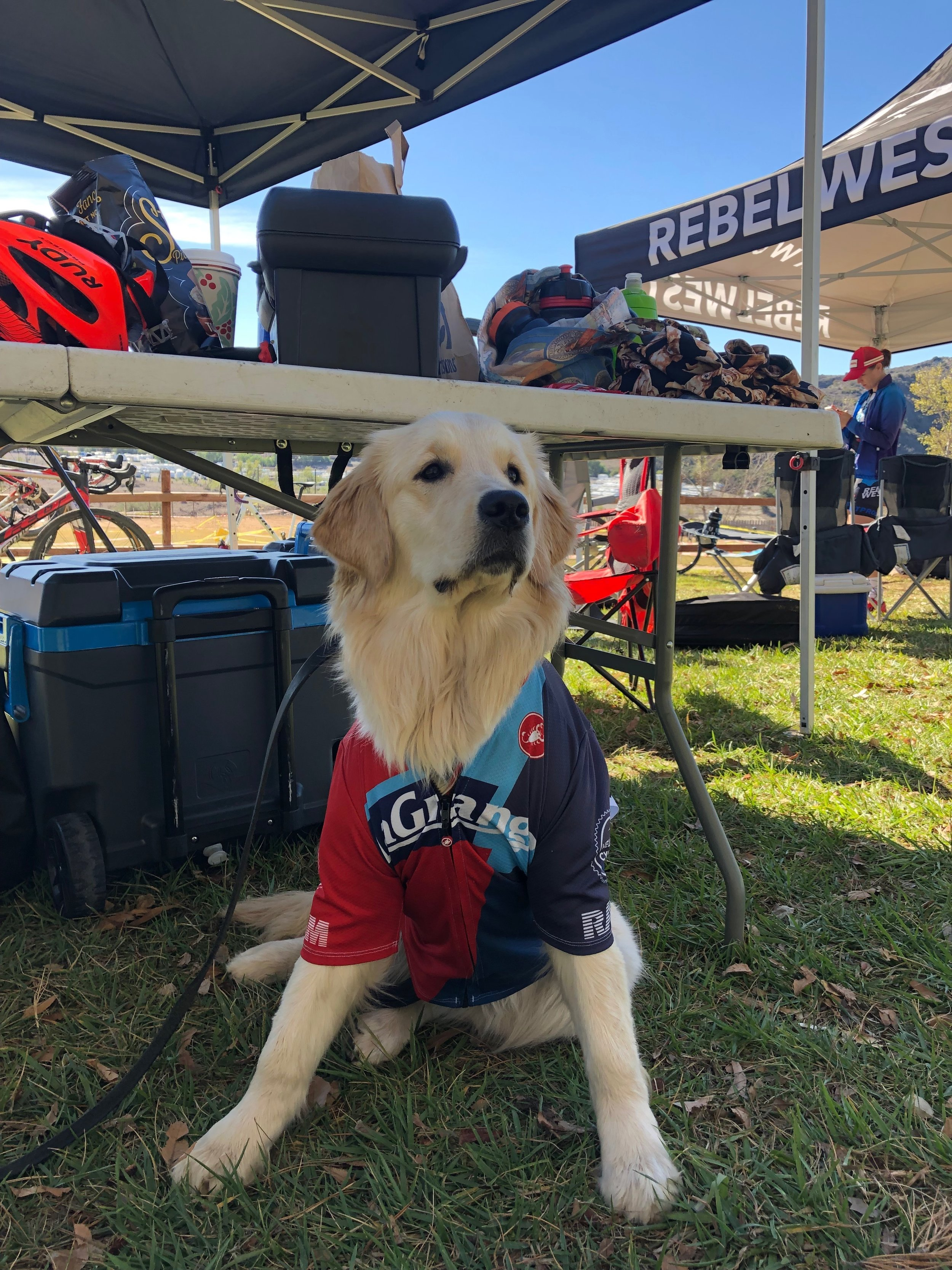 Sophie Millott, team doggie, in her team kit protecting the team tent.