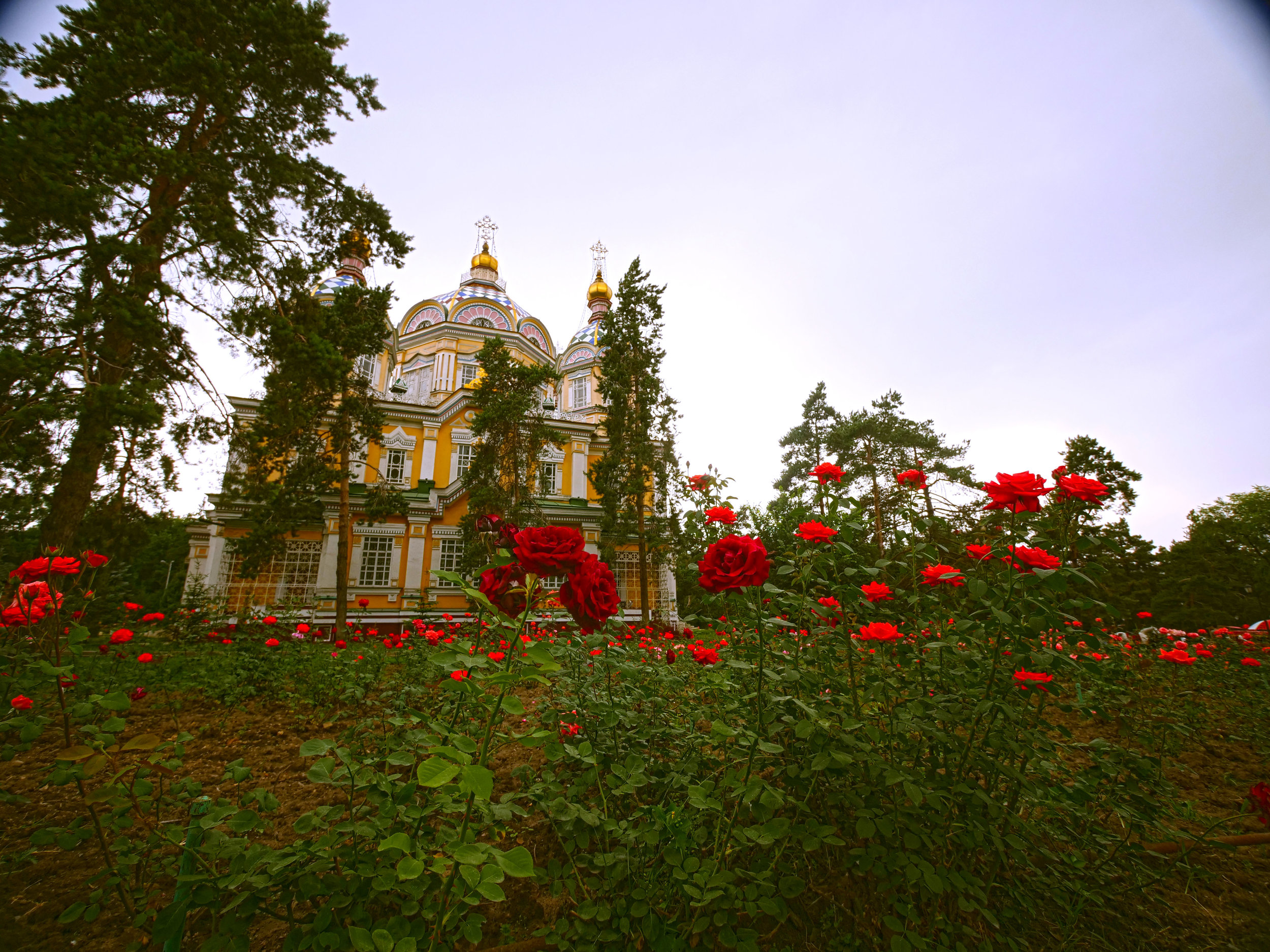 zenkovs cathedral.jpg