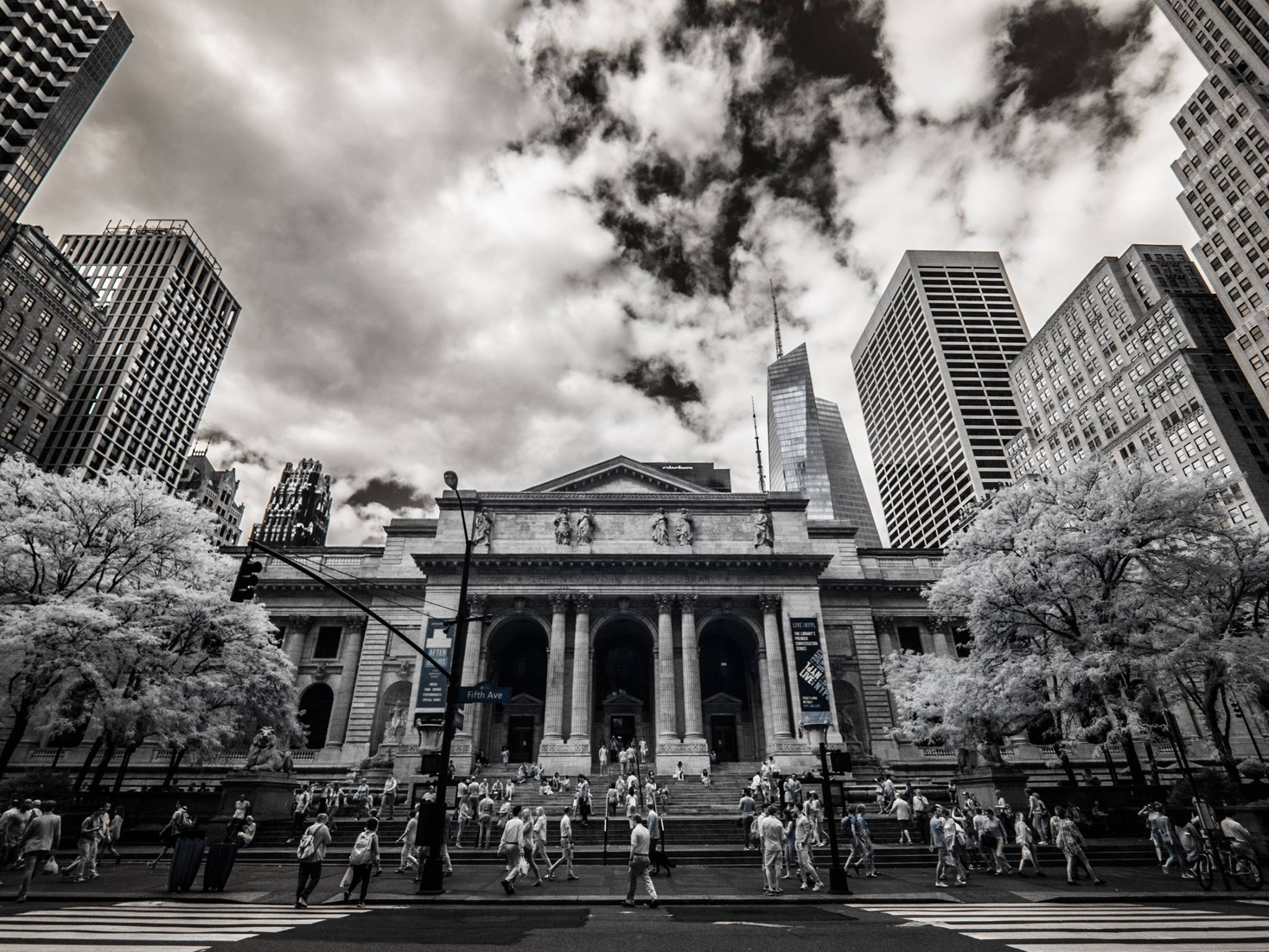 New York Public Library, 8mm