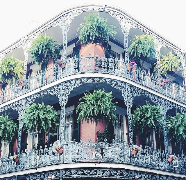 French quarter at its best. #neworleans #plants #balcony