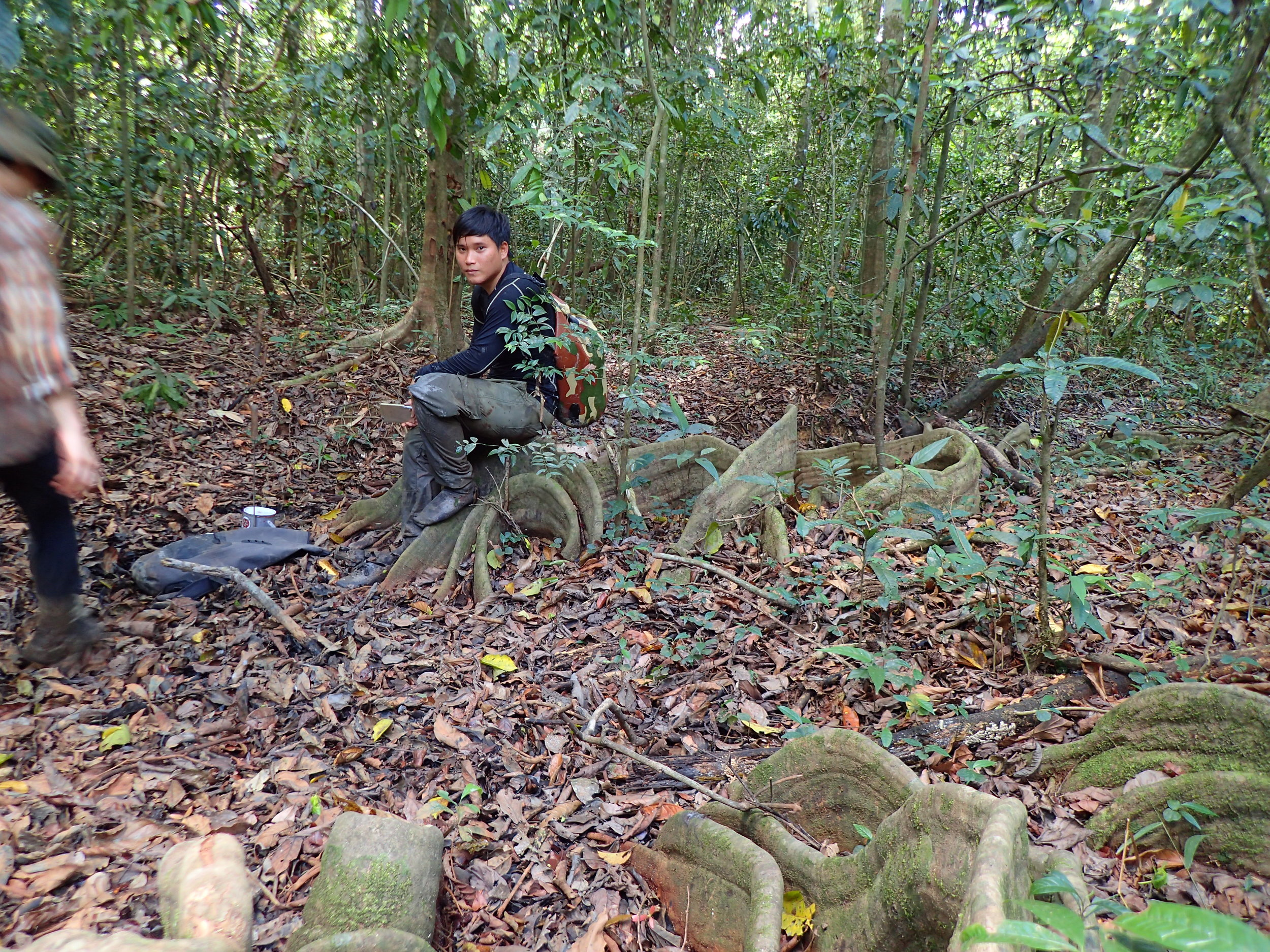 Fikri and I working on a transect through the jungle.