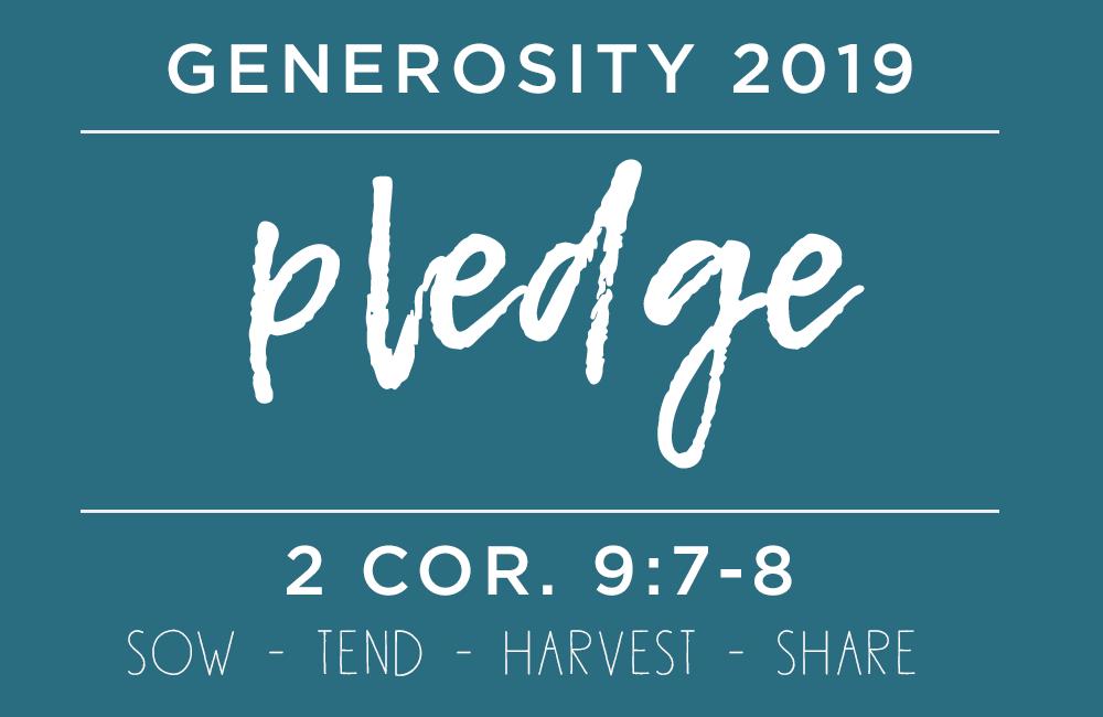 Generosity 2019 pledge.png