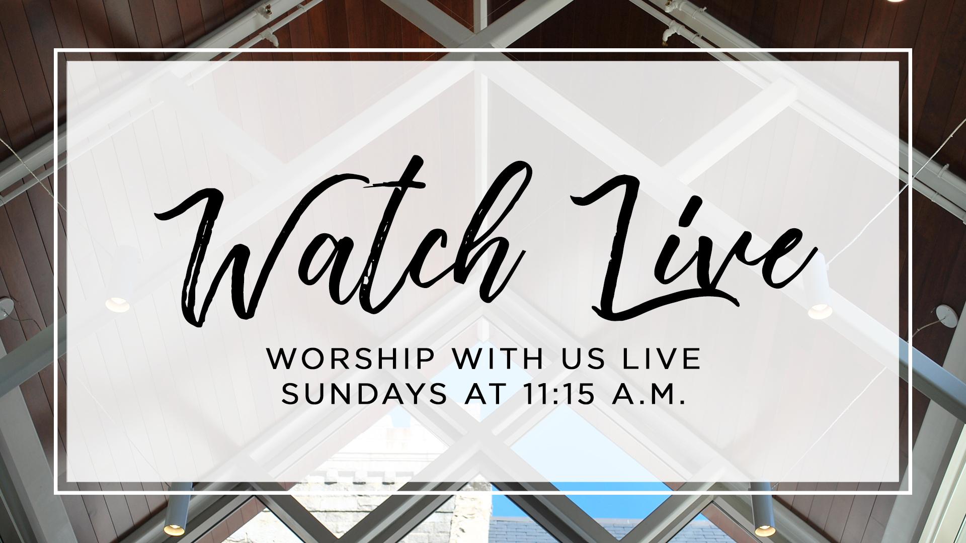Worship Live 1115.jpg