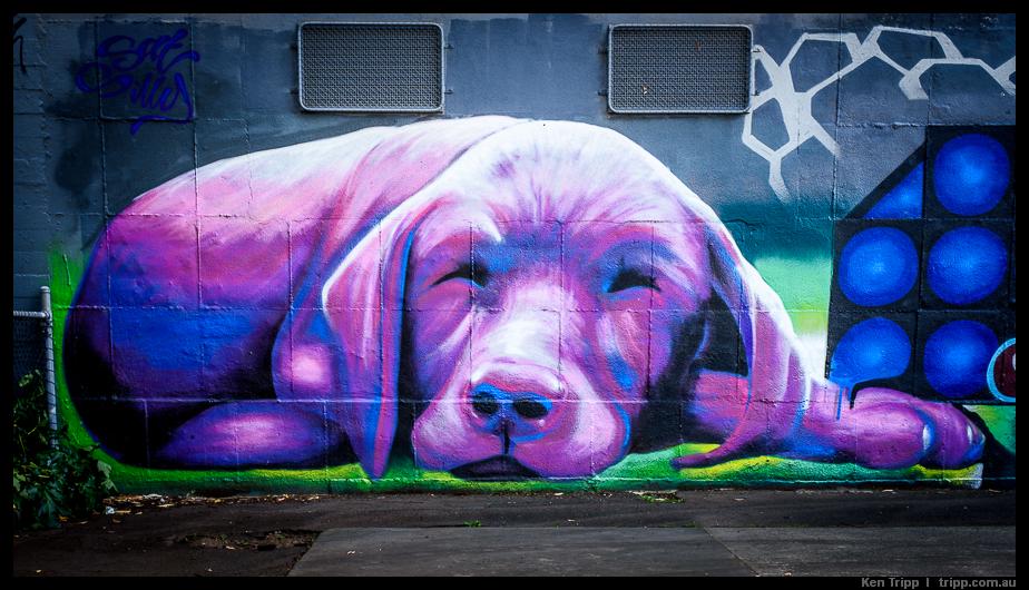 windsor street art pic.jpg
