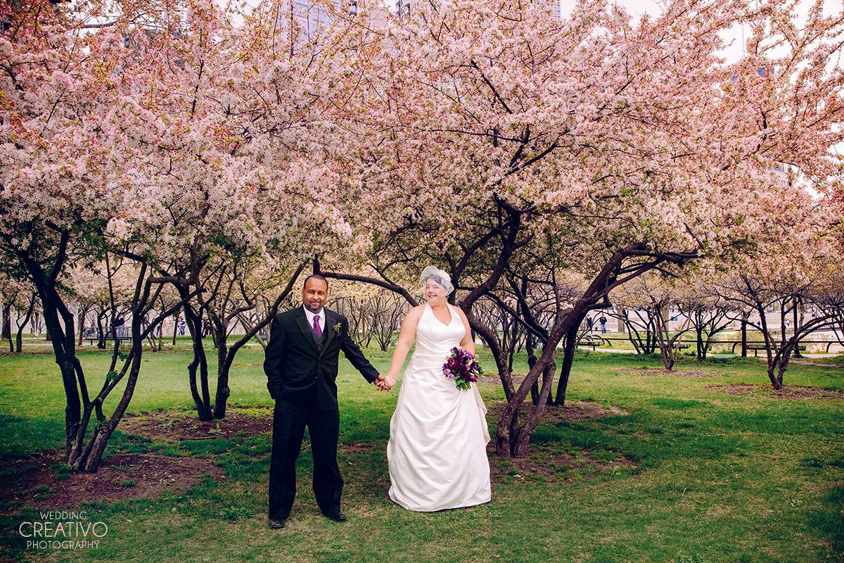 april-cherry-blossoms-michmatt-edfb.jpg