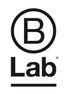 b lab.jpeg