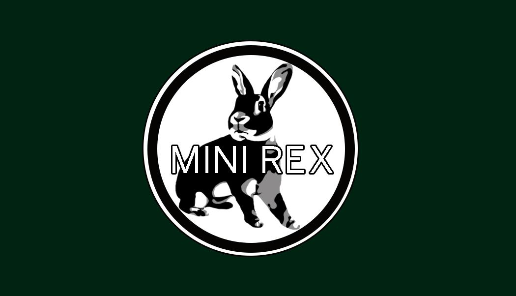 MiniRexKaraokeCard.jpg