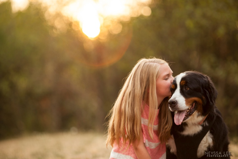 photos of a girl and her best friend, family photography, Bernese Mountain Dogs
