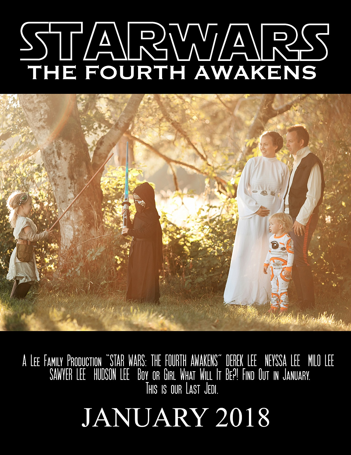Star Wars Pregnancy Announcement, baby 4, movie poster