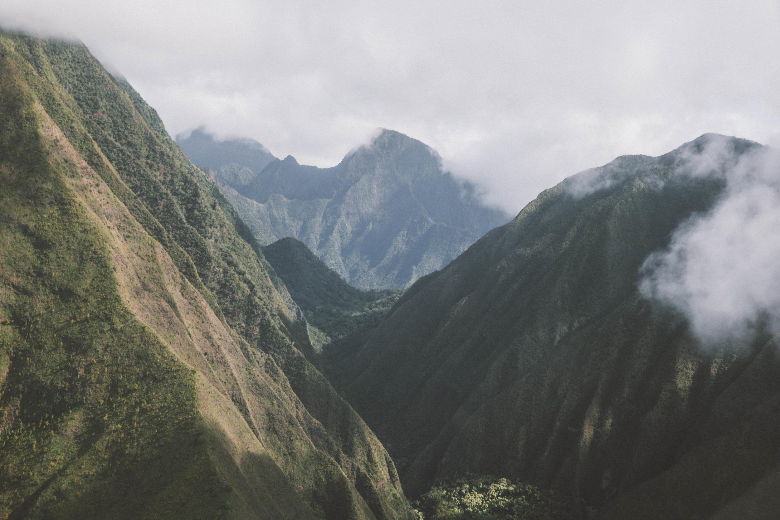 hawaiipick.jpg