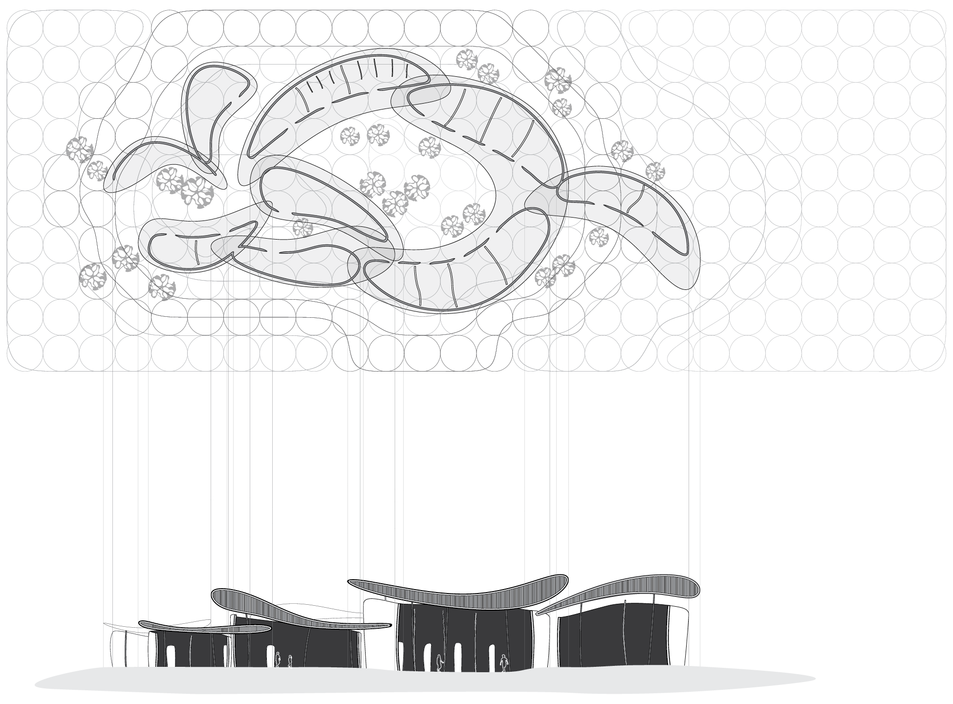 roof plan and section