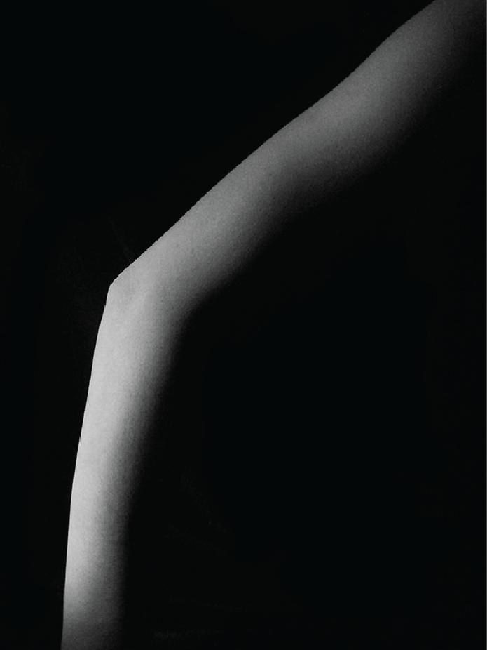 body web-03.png