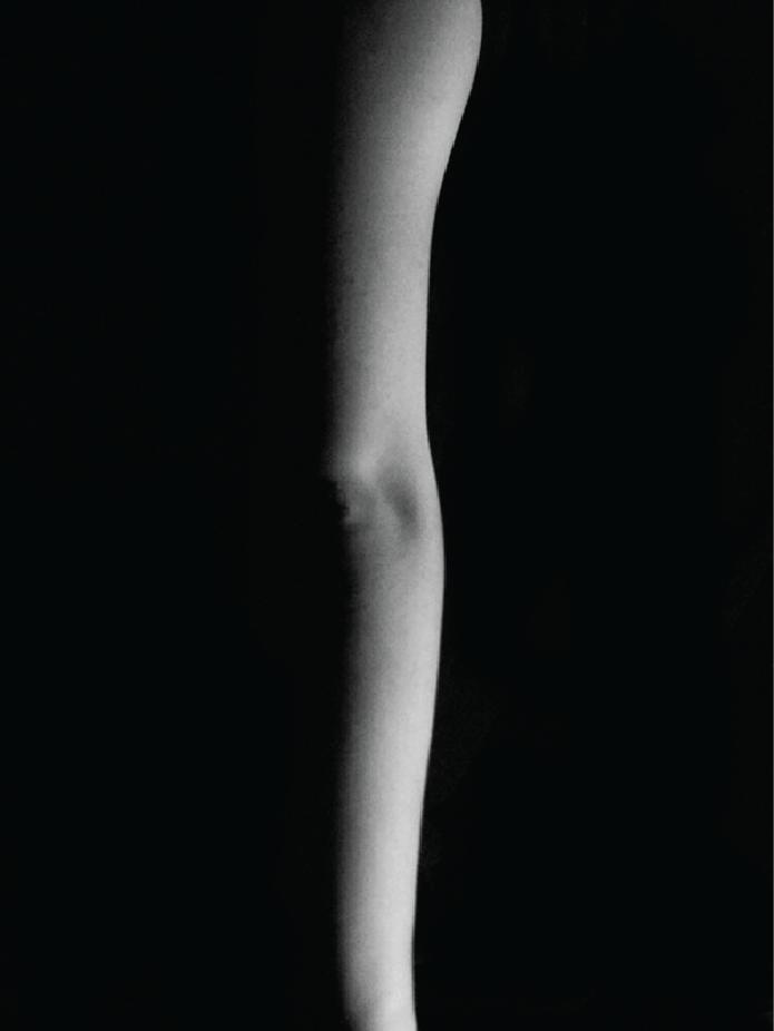 body web-07.png