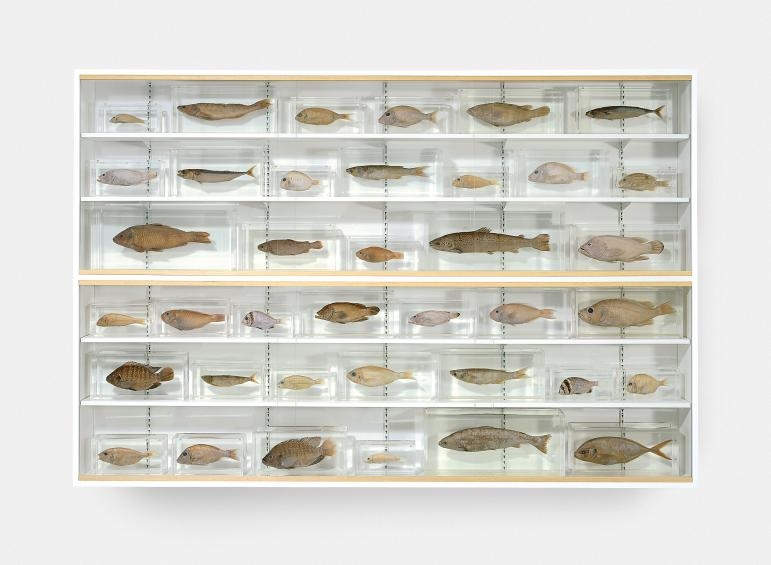 Damien Hirst,  Isolated Elements Swimming in the Same Direction for the Purpose of Understanding (Left) , 1991