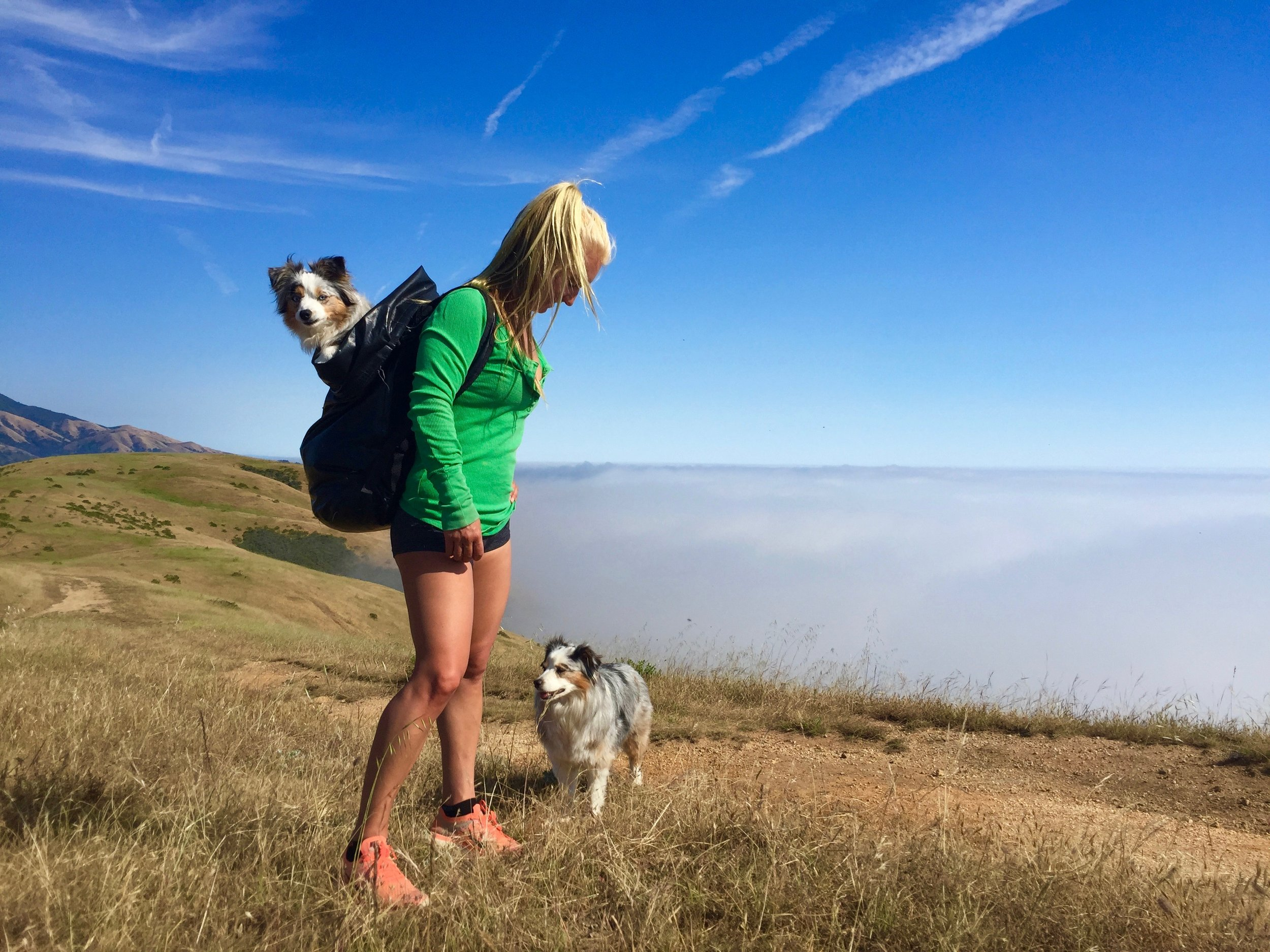 Off the beaten path in Big Sur with Kiwi and Fiji.