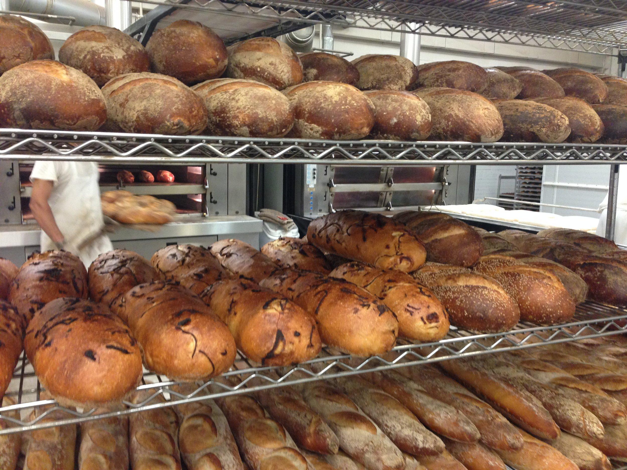 Freshly baked bread at Pain D'Avignon