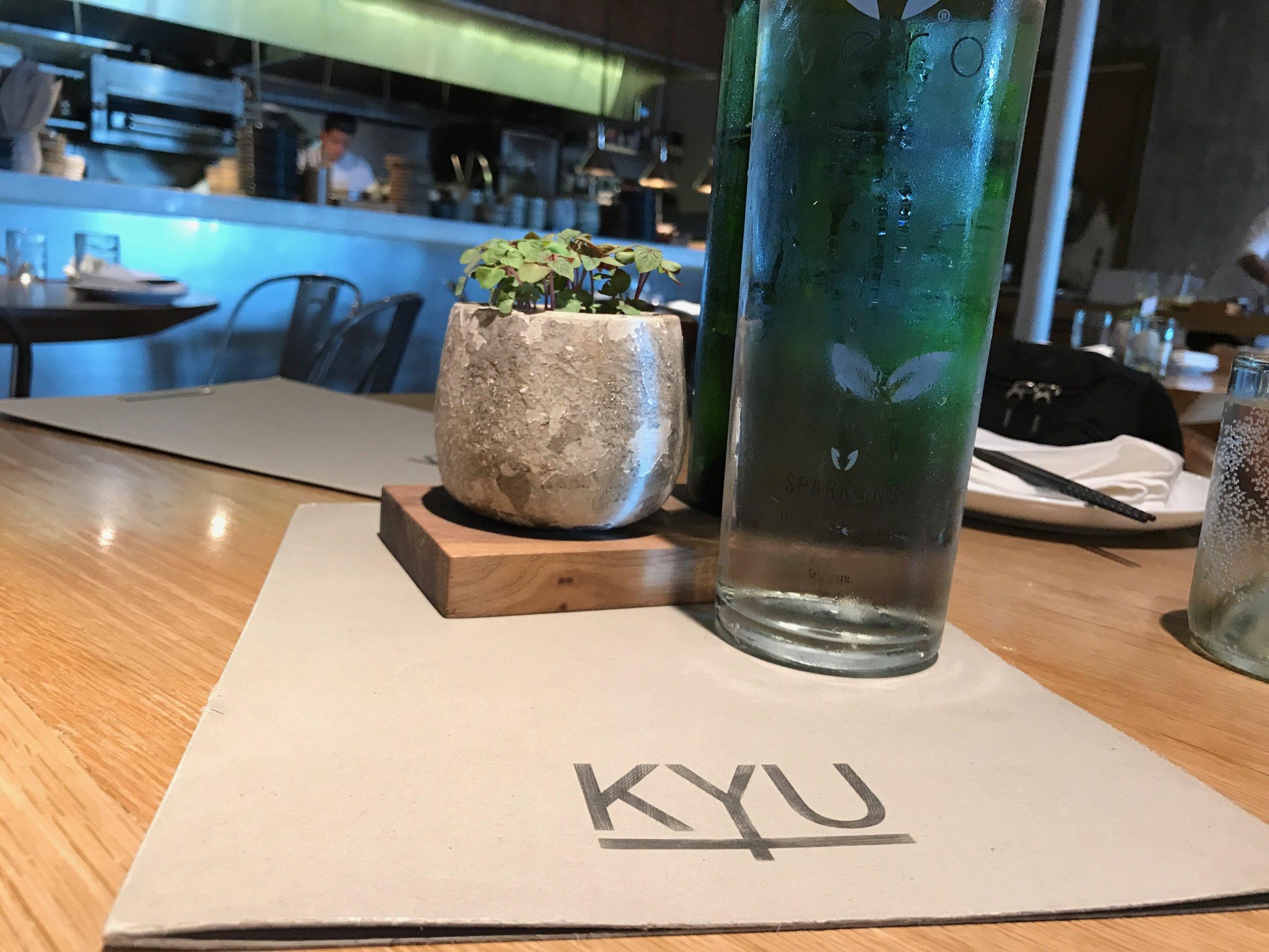Kyu Uses Eco Friendly  Vero Water