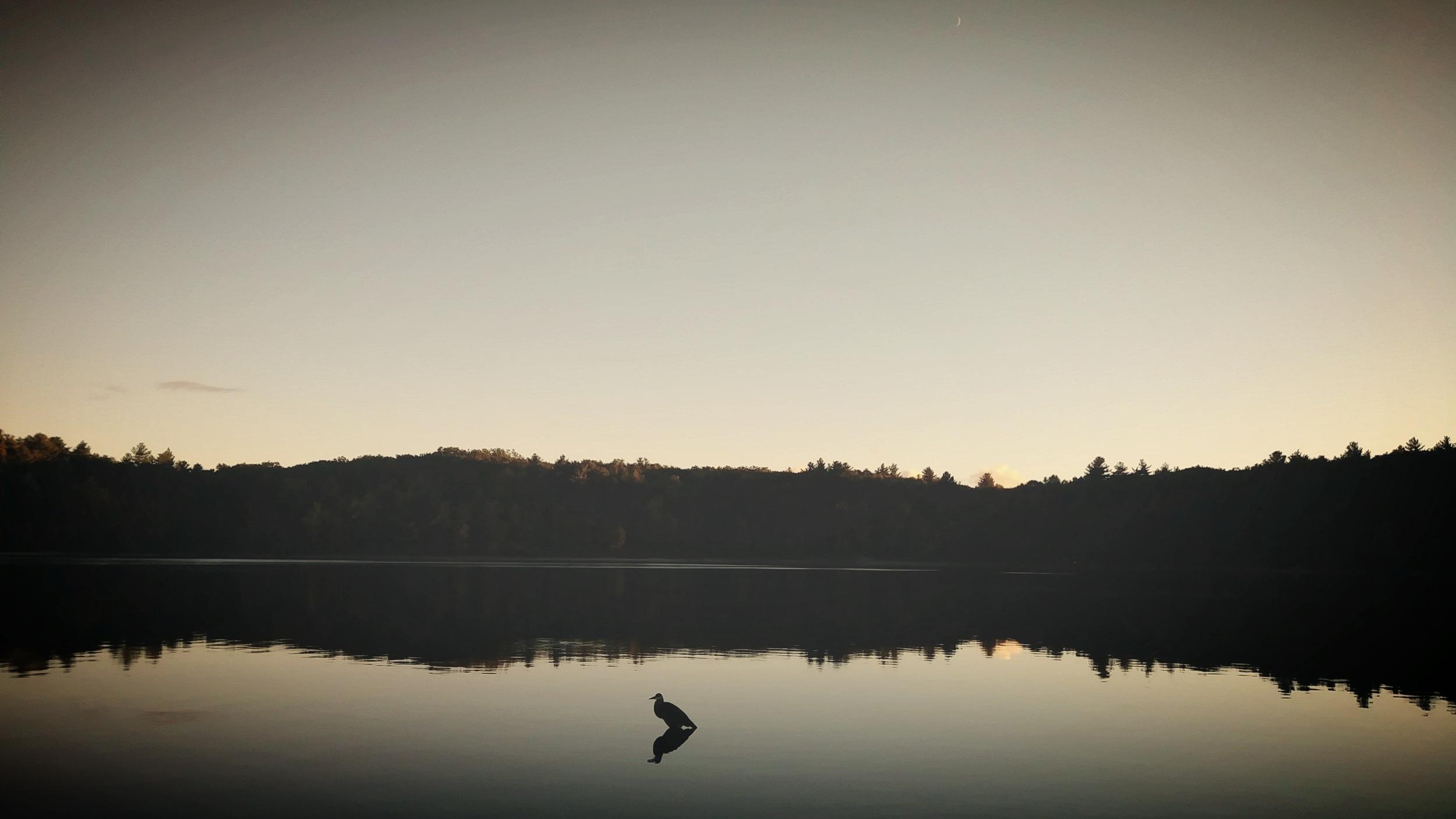 Evening on Walden Pond