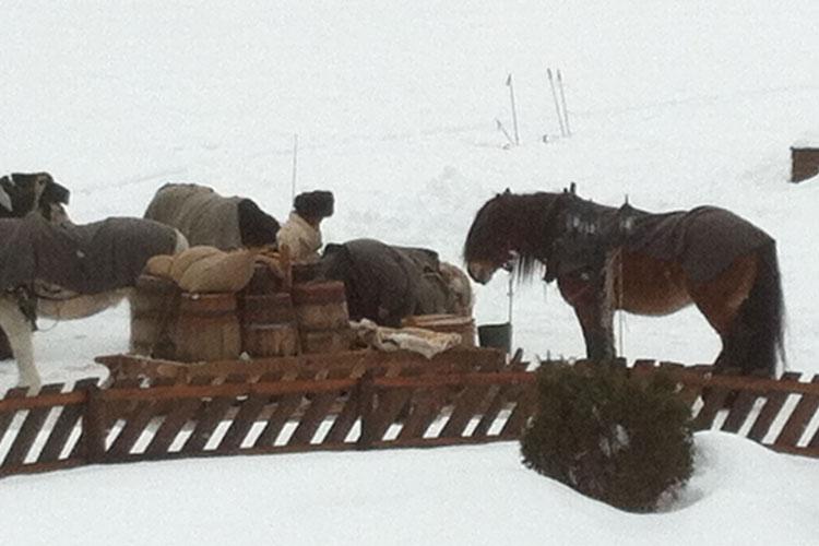 Horseriding01.jpg