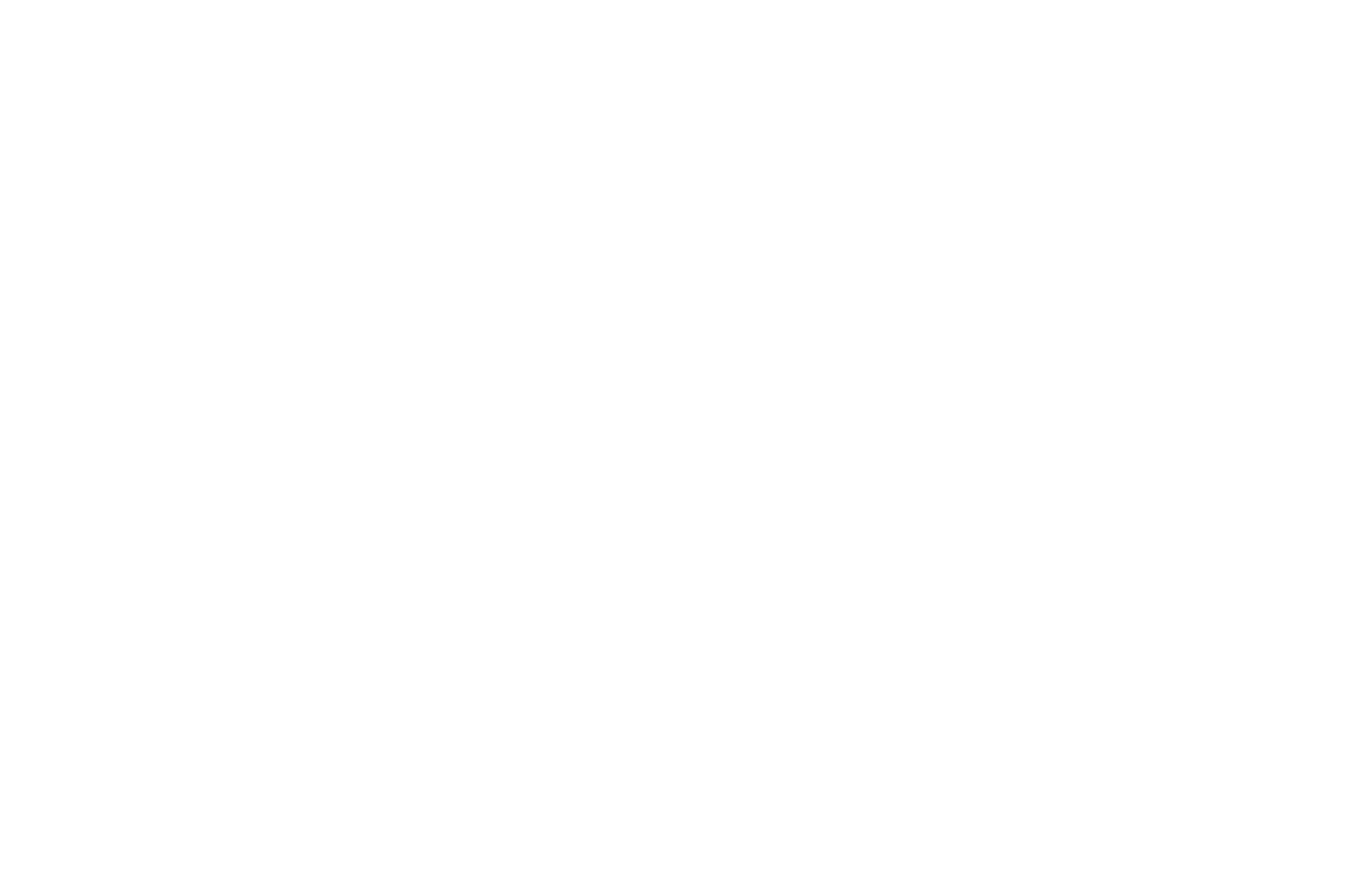 OFFICIAL SELECTION - Damnationland - 2017(1).png
