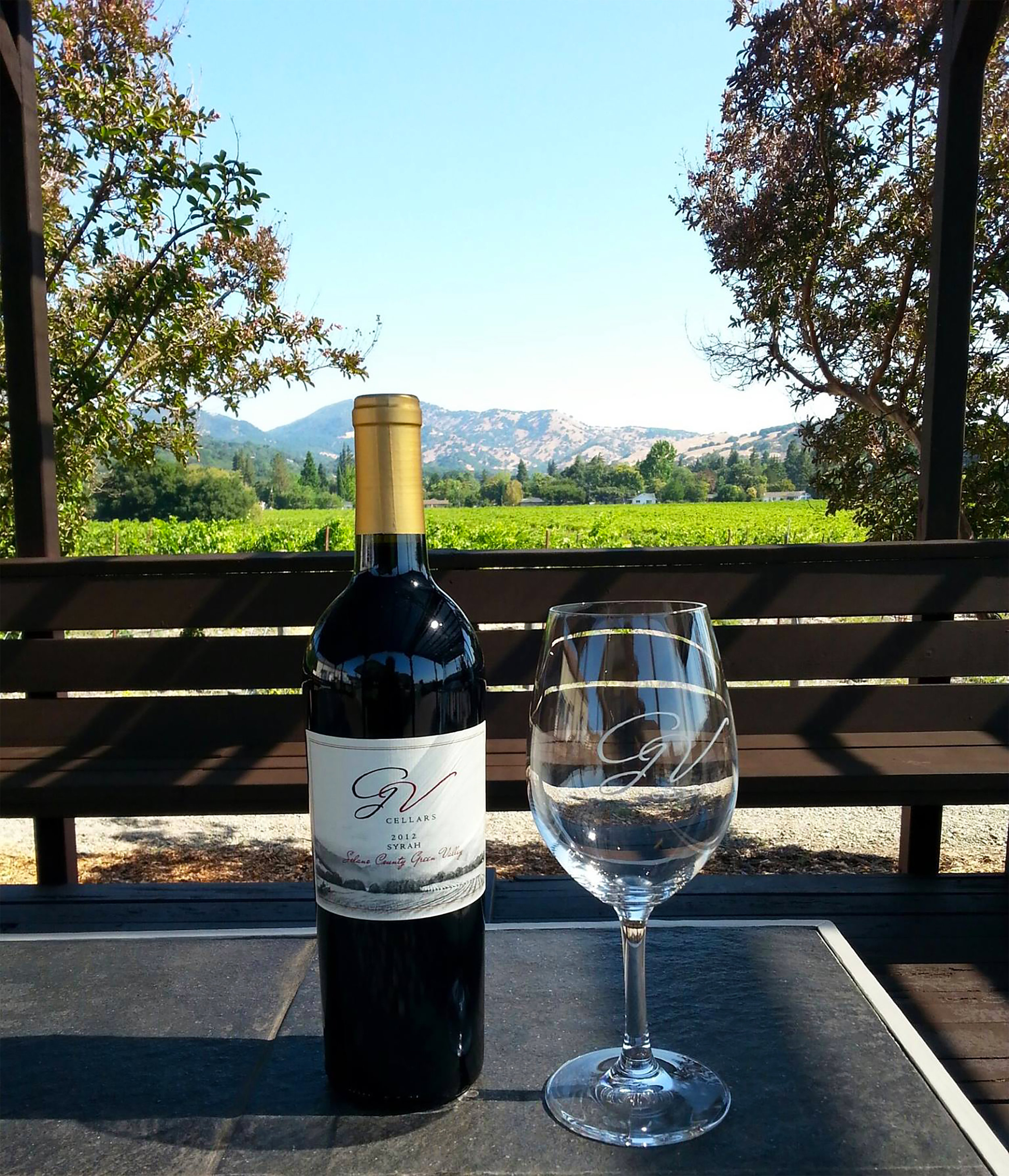 Bottle&WineGlass on Picnic w View .jpg
