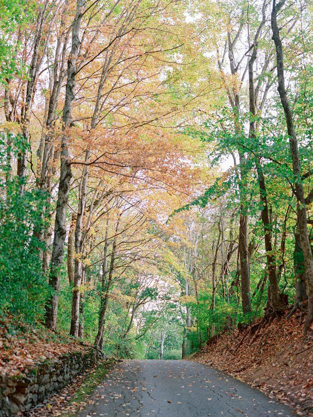 changing-leaves-bloomsbury-farm.jpg