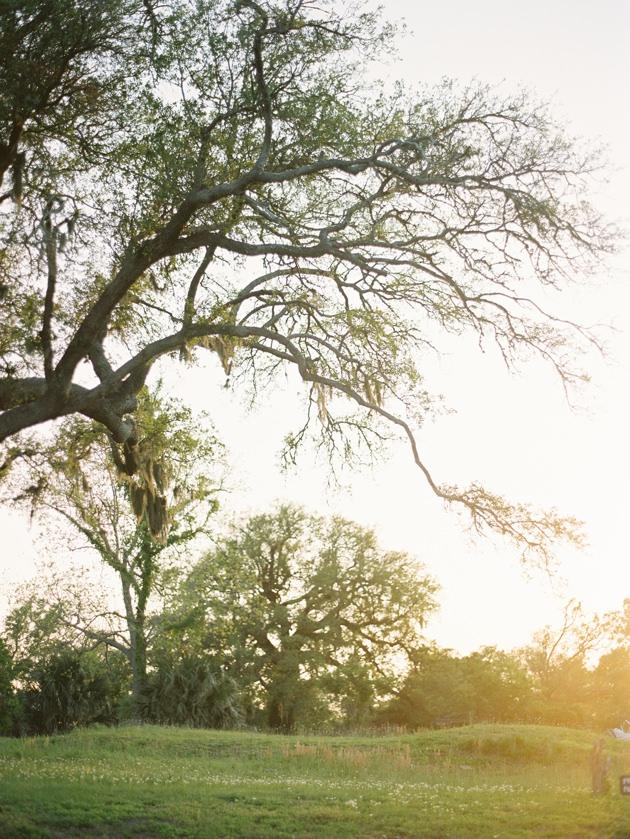 outdoor-farm-wedding-mississippi.jpg