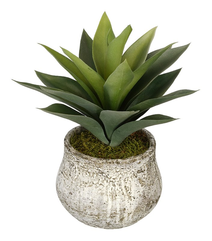 Artificial Succulent Desk Top Plant in Pot