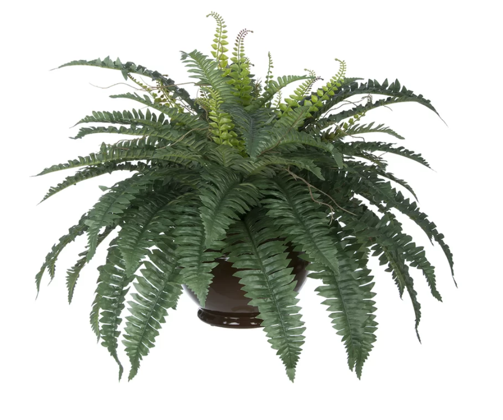 Artificial Fern Desk Top Plant