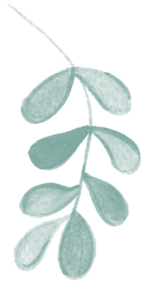 leaves-green-bottom.jpg
