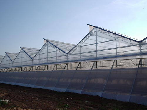 Investing in a Green Ag project can give producers the edge on traditional methods, who rely on intensive use of the land water and chemicals while combating increasingly dynamic weather.
