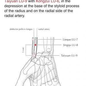 Lung 8 from A Manual of Acupuncture by Deadman, Al-Khafaji and Baker