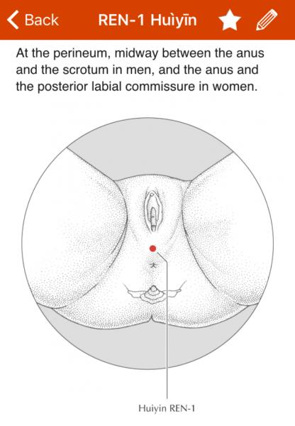 from A Manual of Acupuncture by Deadman, Al-Khafaji, & Baker
