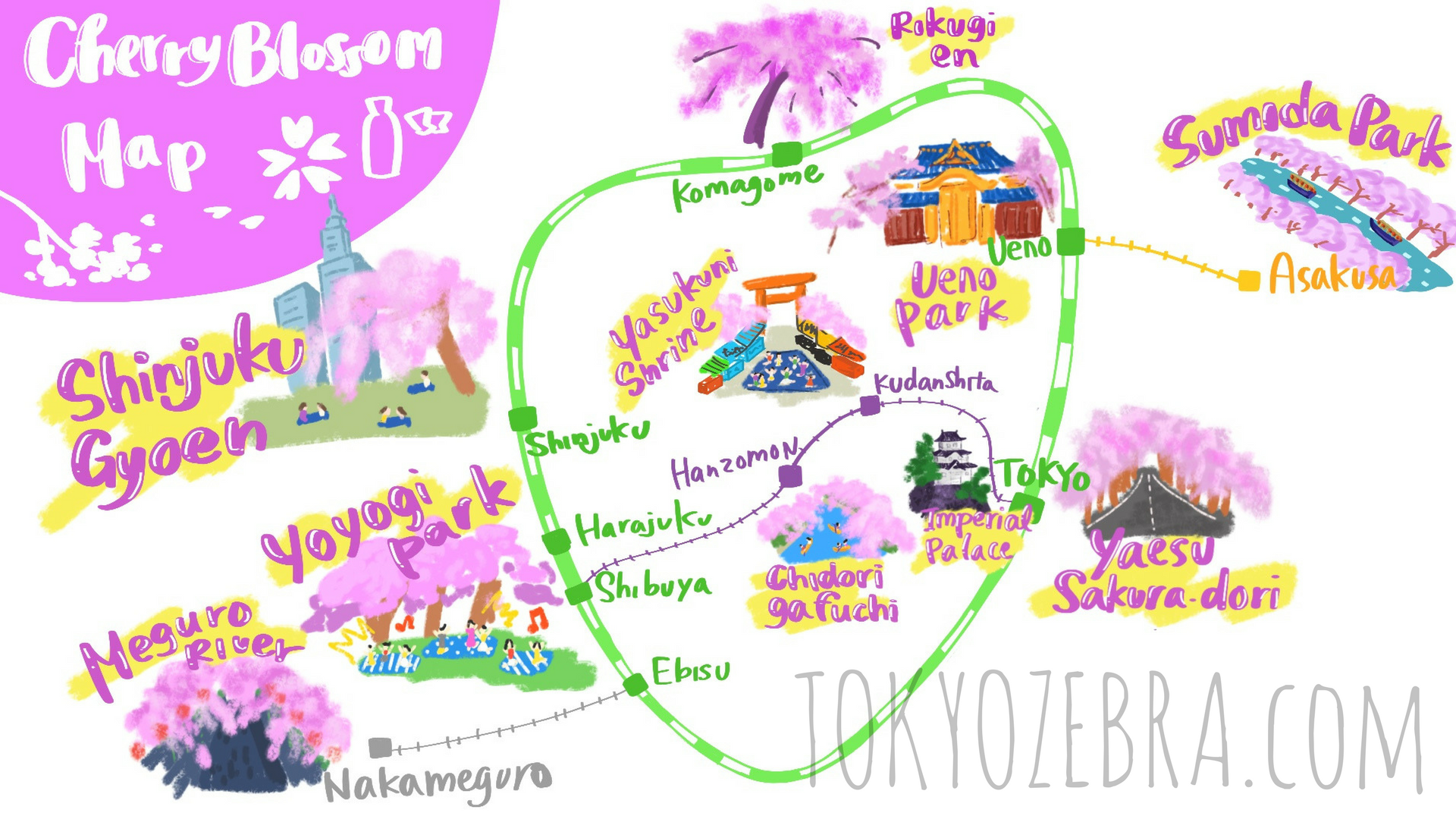 Tokyo Cherry Blossom Map