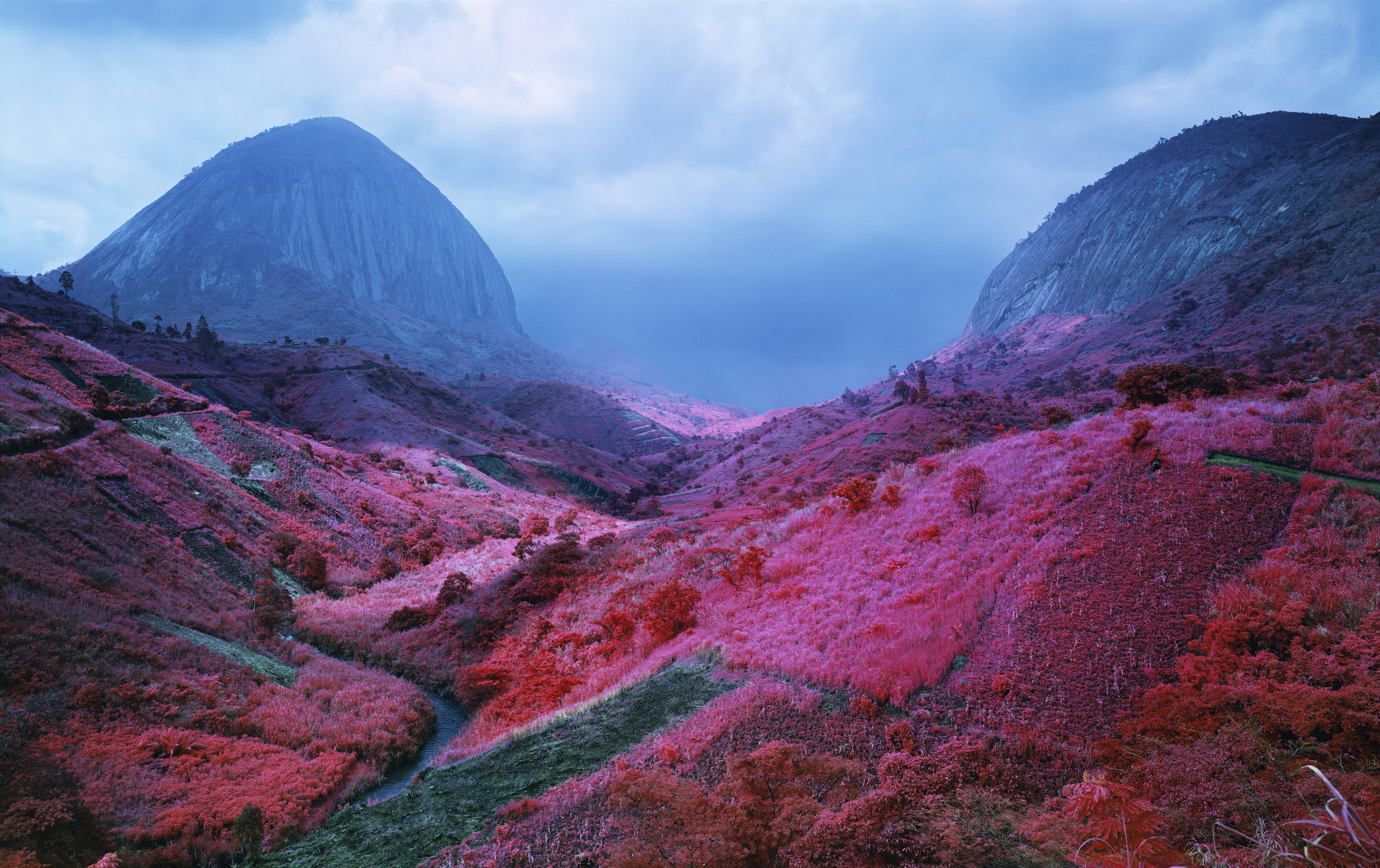 Poison Glen, South Kivu, Eastern Congo, 2012 Digital C print, 50 x 80 inches© Richard Mosse Courtesy of the artist and Jack Shainman Gallery