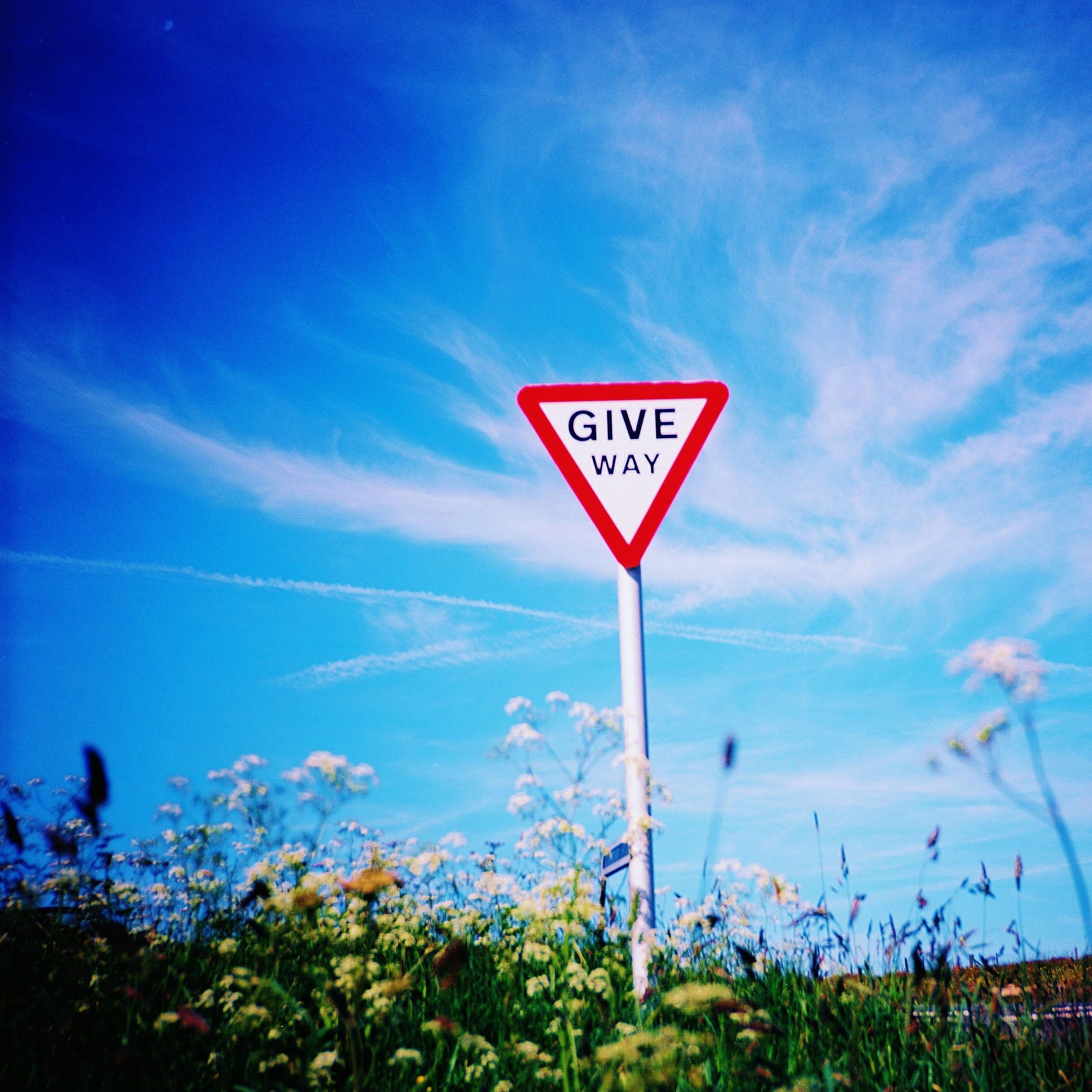 Diana F+ Ektar Give Way