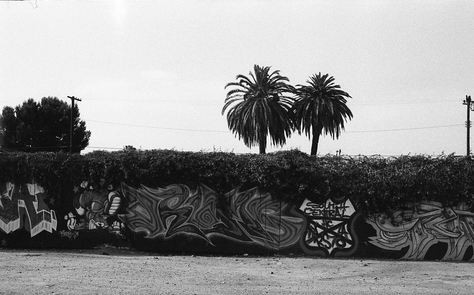 la-grafitti006.jpg